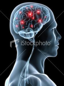stock-photo-8788006-human-brain